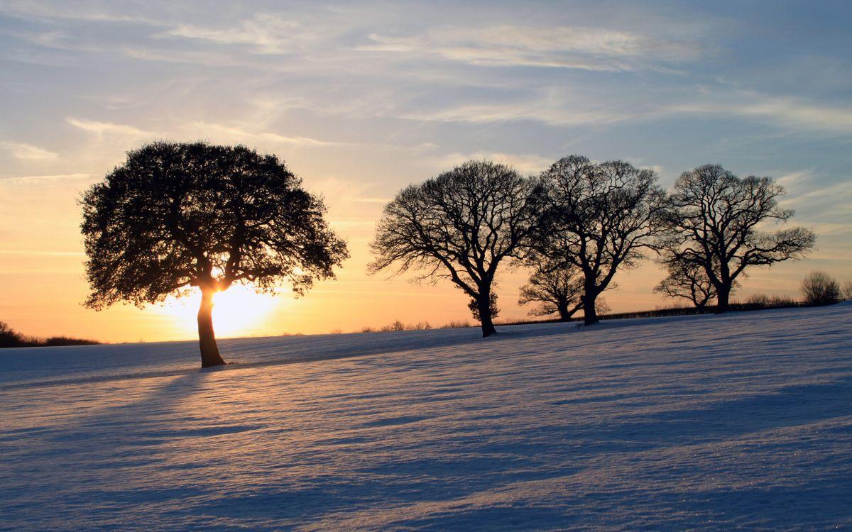 Обои закат, солнце, деревья, лучи, снег, зима, пейзажи на телефон | картинки пейзажи