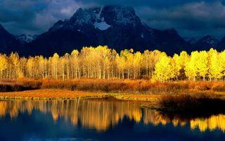 Бесплатные фото гора,лес,желтый,вода,деревья,красиво,природа