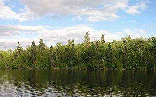 Фото бесплатно лес, река, озеро