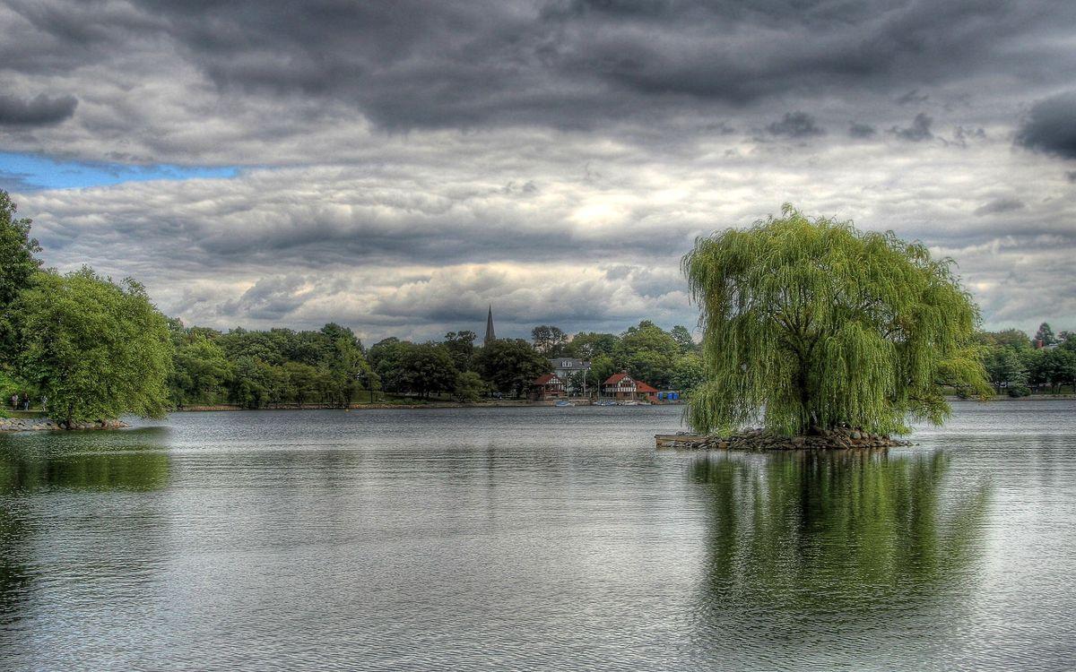 Фото бесплатно лес, трава, вода, берег, остров, деревья, озеро, природа, природа