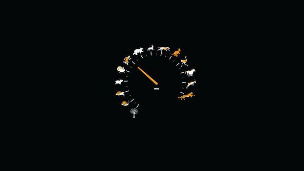 Бесплатные фото распределение,скорости,спидометр,движение,скорость,мили,разное