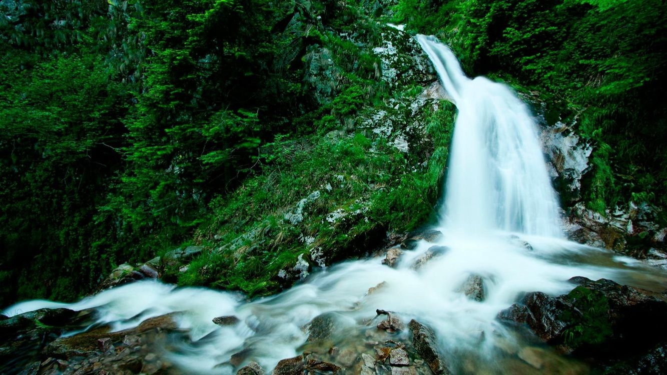 Фото бесплатно водопад, ил, зелень, трава, растительность, лес, природа, природа