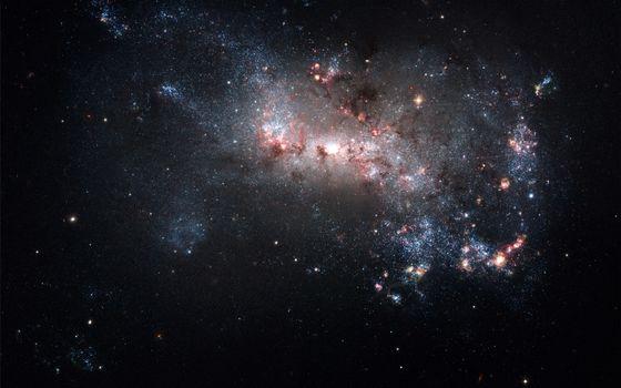 Фото бесплатно космос, звезды, созвездие