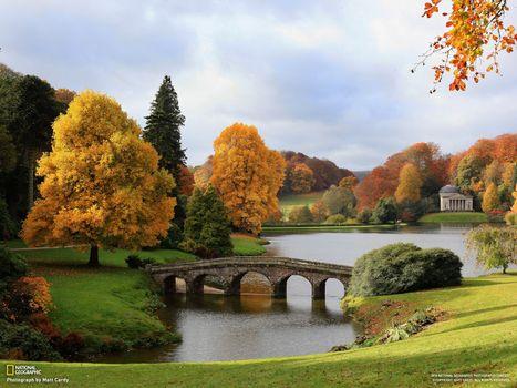 Бесплатные фото река,national geographic,мост,трава,зеленый,деревья,листья,желтый,ель,пейзажи
