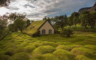 Фото бесплатно дом, деревья, кочки, трава, небо, горы, пейзажи