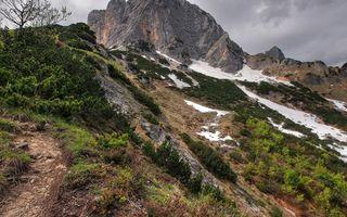 Фото бесплатно камень, гора, деревья