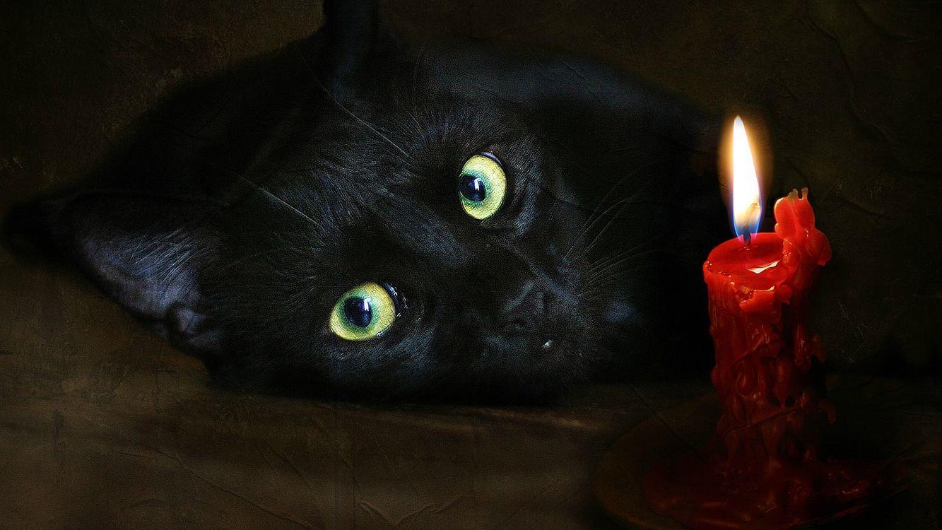 Фото бесплатно кот, черный, морда, глаза, зеленые, свеча, красная, пламя, кошки, кошки