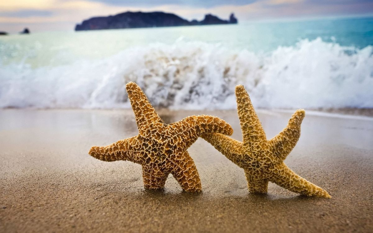Фото бесплатно море, океан, пляж - на рабочий стол