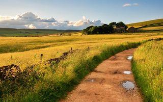 Фото бесплатно поле, трава, забор