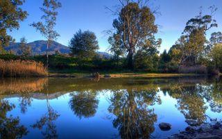 Фото бесплатно лето, отражение, деревья