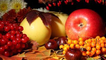 Бесплатные фото виноград,яблоки,каштаны,листья,фрукты,натюрморт,еда