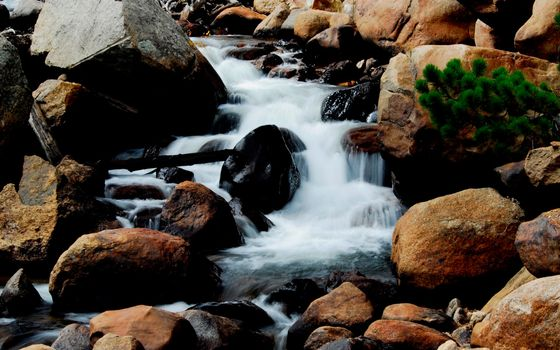 Фото бесплатно валун, река, деревья