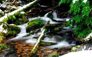 Фото бесплатно берег, водопад, лес