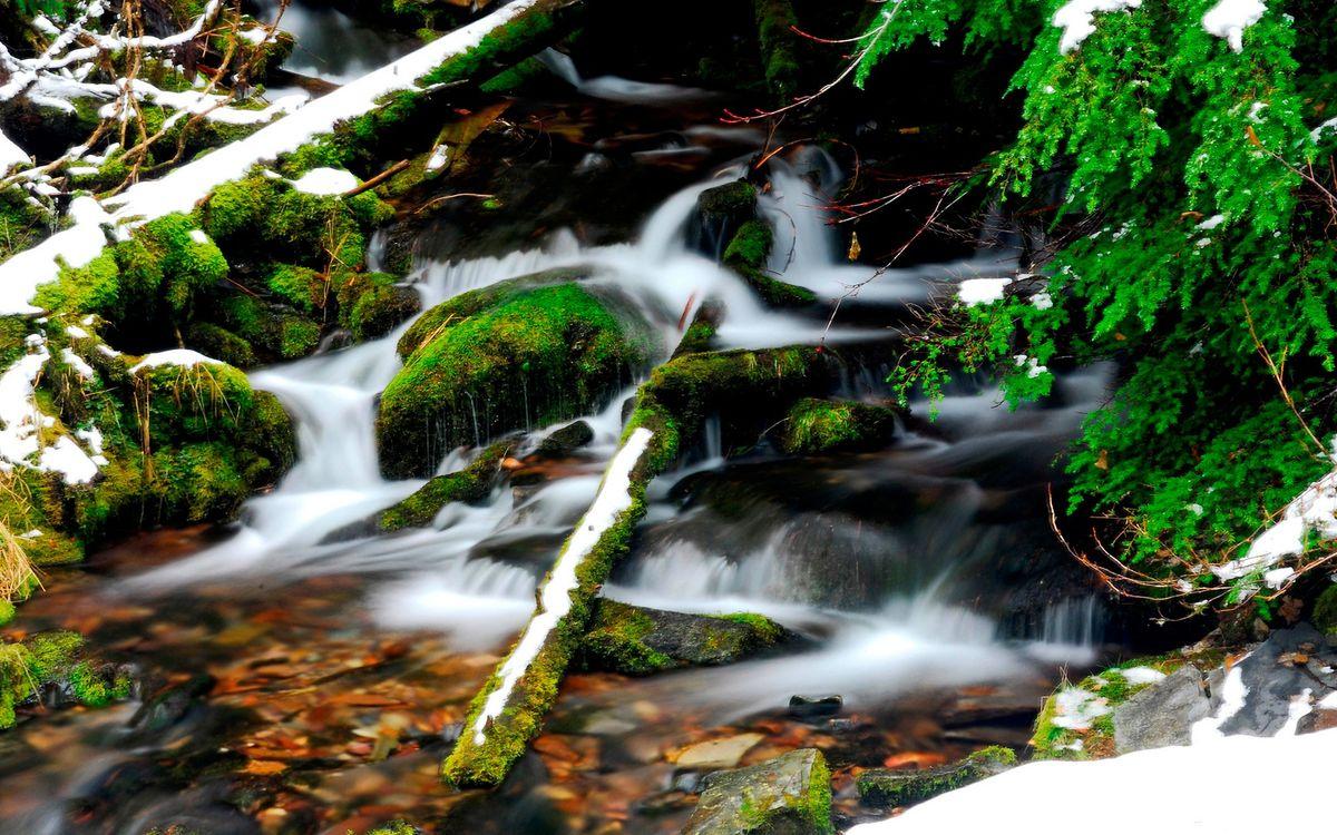 Обои вода, река, водопад, деревья, лес, берег, снег, природа на телефон | картинки природа
