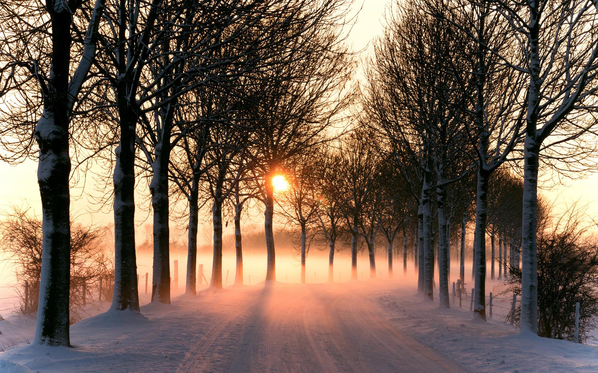 зима, снег, дорога