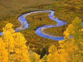 Бесплатные фото осень,река,деревья,листопад,трава,пейзажи,природа