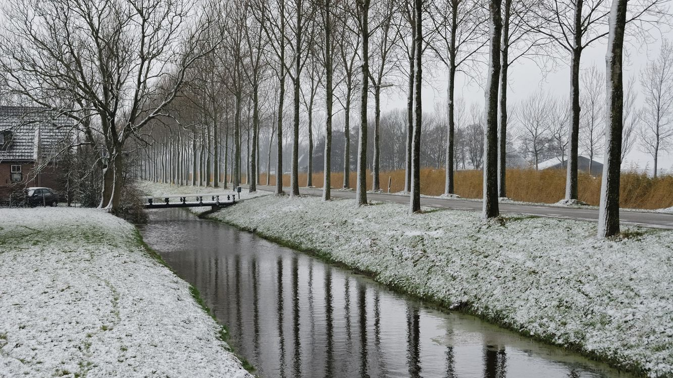Фото бесплатно дорога, деревья, ручей, вода. дом, машина, пейзажи, природа, природа