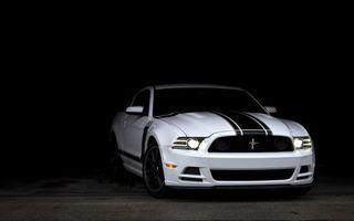 Бесплатные фото ford,mustang,shelby,белый,черная,полоса,машины