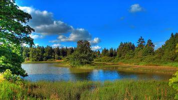 Заставки германия,лес,озеро,пейзажи