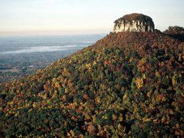 Бесплатные фото горы,лес,деревья,вода,горизонт,небо,природа