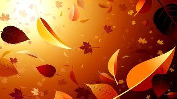 листья, листопад, свет, оранжевый, цвет