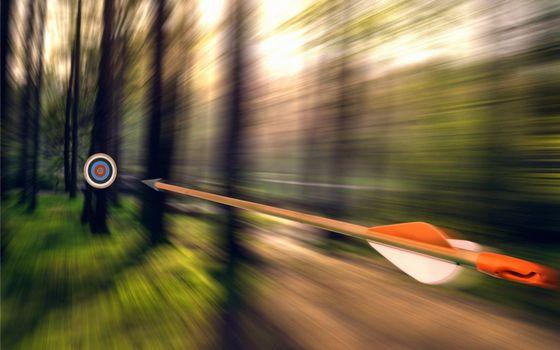 Фото бесплатно мишень, стрела, полет, деревья, лес, разное