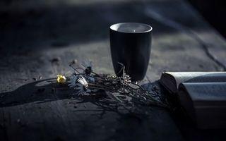 Бесплатные фото стол,ромашки,книга,стакан,свет,тень,разное