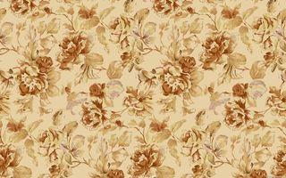 Бесплатные фото цветы,розы,панно,листья,лепестки,цветки,фон