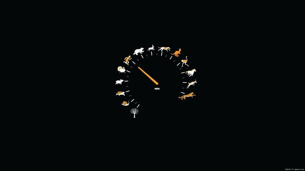 Photo free speedometer, speed, black