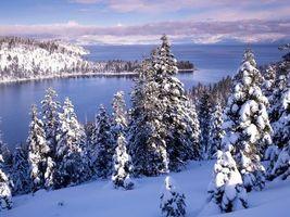 Бесплатные фото море,снег,горы,холм,ель,сугроб,небо