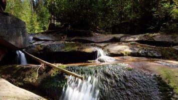 Фото бесплатно ручей, камни, вода, трава, мох, палка, деревья, пороги, пейзажи