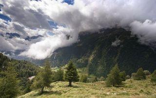 Бесплатные фото горы,деревья,трава,зеленая,небо,облака,низкие