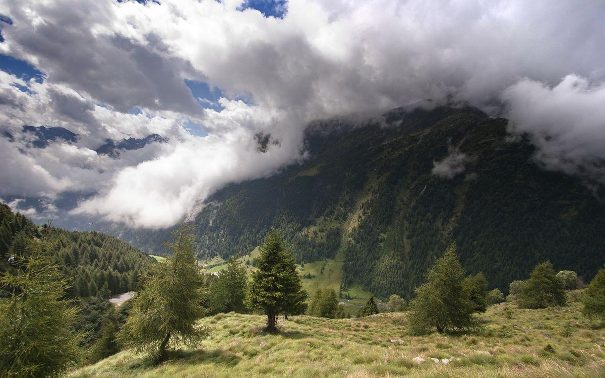 Фото бесплатно горы, деревья, трава, зеленая, небо, облака, низкие, природа, природа