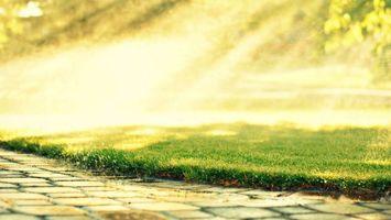 Обои каменная, тропинка, трава, газон, брызги, капли, лучи, солнца, день, лето, природа, макро