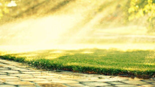 каменная, тропинка, трава, газон, брызги
