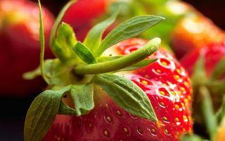 Фото бесплатно клубника, ягода, листья