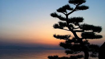 Бесплатные фото море,горы,вода,дерево,закат,восход,пейзажи