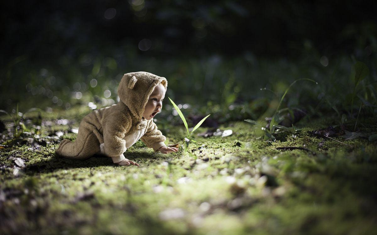 Фото бесплатно ребенок, малыш, комбинезон, ушки, трава, разное, разное