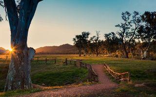 Бесплатные фото тропинка,заборчик,деревья,трава,небо,закат,солнце