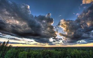 Фото бесплатно небо, тучи, осень, деревья, ветки, листья, крона, горизонт, солнце, закат, природа, пейзажи