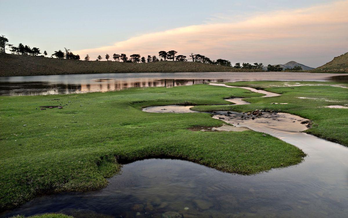 Фото бесплатно трава, вода, лужи, озеро, деревья, небо, закат, разное - скачать на рабочий стол