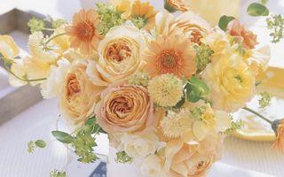 Бесплатные фото букет, композиция, цветы, разные, лепестки, листья