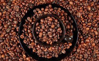 Бесплатные фото кофе,чашка,кружка,тарелка,блюдце,зерна,урожай