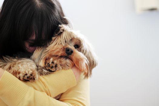 Бесплатные фото обнимашки,девушка,брюнетка,собака,красивые,настроения