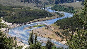 Бесплатные фото река, вода, лес, деревья, песок, горы, природа