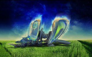 Бесплатные фото трава,поле,дорожки,тропинки,небо,голубое,синее