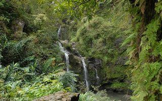 Фото бесплатно водопад, вода, трава
