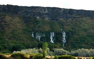 Бесплатные фото водопад,вода,трава,джунгли,камни,деревья,ветки