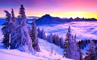Фото бесплатно зимний горный пейзаж, сугробы, елки