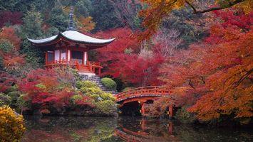 Бесплатные фото пагода,кіото,японія,дайго,річка,дерева,червоний